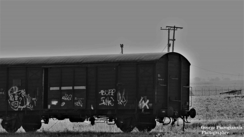 Σταθμός Παλαιοφάρσαλα Τραίνο